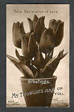 c1920s Birthday Card: Tulip, Declaration of Love