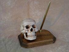 Skull Pen Holder, Halloween Prop, Human Skulls Skull