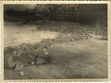 PHOTO ANCIENNE - VINTAGE SNAPSHOT - ENFANT JOUET BROUETTE CHUTE GAG DRÔLE -CHILD