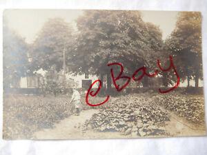 302 Washington Street Dover NH House Home Boy In Garden 1908 RPPC Photo Postcard
