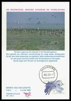 NIEDERLANDE MK 1982 FAUNA VÖGEL BIRDS MAXIMUMKARTE CARTE MAXIMUM CARD MC CM bv94