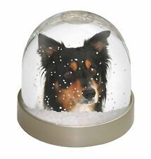 Border Collie Dog Photo Snow Globe Waterball Stocking Filler Gift AD-BC13GL