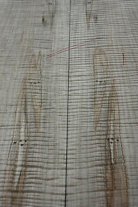 AAA+ Fiddleback Ambrosia Spalted Maple bookmatched carved guitar top 24mm S1
