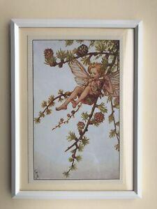 Flower Fairies framed print - Larch Fairy - Cicely Mary Barker 1923