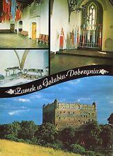 Old Postcard-Zamek w golubin dobrzyniu