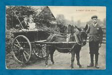 """EARLY 1900s PC """"A GREAT ALNE IDYLL"""" CHILDREN IN DONKEY CART WITH YOUNG MAN"""