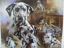 Dalmatian Print - Mick Cawston 1 - Ltd.Edn. 40/850