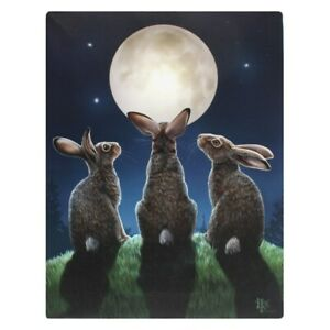 MOON SHADOWS LISA PARKER SMALL CANVAS PICTURE ART PRINT HARE RABBITS STARS FIELD