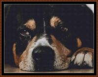SLEEPY PUP 6 cross stitch pattern PDF (point de croix) (dog)