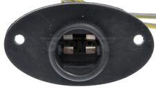 License Lamp Socket Dorman 645-748