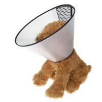 Elizabethan Dog Collar Cone Total Pet Health Wound New Portable Y2I5