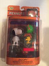 It's The Great Pumpkin Charlie Brown Peanuts Snoopy & Woodstock Figurine 2005
