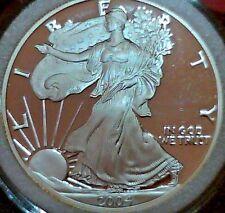 2004-W Proof American Silver Eagle 1 OZ .999 Silver in Airtight Capsule