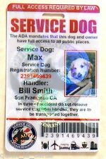 HOLOGRAPHIC PVC SERVICE DOG ID CARD ASSISTANCE ANIMAL ID BADGE TAG FOR VEST #ORH