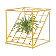Dahey Air Plant Holder Metal Tillandsia Rack Gemometric Planter Air Ferns for 4""