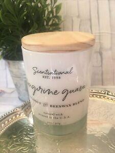 Scentsational TANGERINE GUAVA Medium Candle Glass 11 oz Each! NEW!