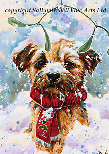 Cute Border Terrier dog Christmas cards pack of 10. C370X Christmas Trimmings