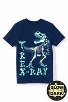 T-Rex Dinosaur T-shirt Boys NEW