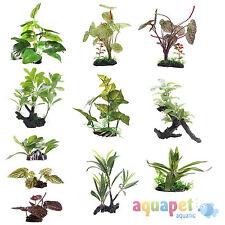 Natural/Genuine Aquarium Plastic Plants
