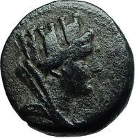 APAMEIA Seleukis Ancient 14AD Authentic Ancient Greek Coin - TYCHE ATHENA i66510