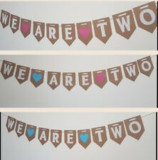 We Are Two Bunting. Twins boy girl birthday celebration party. Pink Blue.