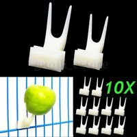 10Pcs L/S Pet Parrot Fruit Fork Birds Food Holder Feeder Device Pin Clip  -
