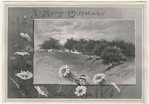 Vintage Christmas Card Field Daisies Trees Victorian John A. Lowell and Company