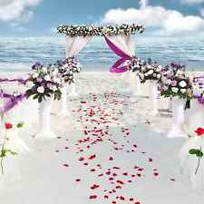 Seaside Wedding 10'x10' CP Backdrop Computer printed Scenic Background CM-5187