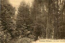 Carte LUCENAY L'EVEQUE En Rivaux Sous Bois La forêt