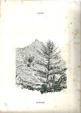 1880 POUSSET Cogne Gran Paradiso vedute Valle d'Aosta litografia alpinismo