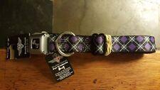 Buckle-Down Dog Collar Seatbelt Buckle -  Vertical & hori Multi Color Stripe - x