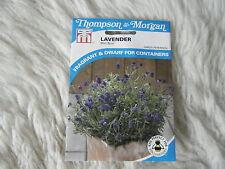 SEEDS T&M FLOWER  LAVENDER MINI BLUE SEED RRP £2.99