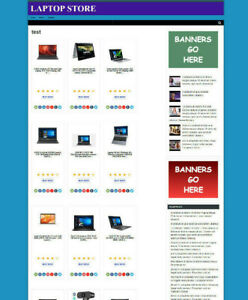 LAPTOP COMPUTER STORE AFFILIATE WEBSITE & BLOG WITH NEW DOMAIN & HOSTING