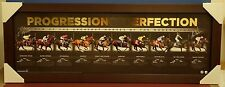 Progression of Perfection Signed Nolen Johnston Greatest Horses Black Caviar