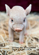 Outdoor Garden Resin Animal Ornament Pet Gift Pig Piglet Sitting Plain Pink