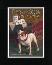 ENGLISH BULLDOG ON VINTAGE STYLE FRY'S COCOA ADVERT DOG ART PRINT READY MATTED