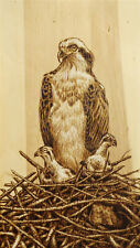 """NESTING"" OSPREYS AND MICE/BIRD/ANIMAL ORIGINAL PYROGRAPHY/WOODBURNING DRAWING"