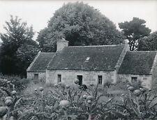 SAINT POL DE LÉON c. 1940 - Maison Culture d'Artichauts  Finistère - DIV 7916