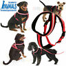 Dog Harness Reflective Company Of Animals 8 Different Sizes COMFY FOR PET