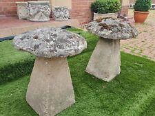 More details for reclaimed mushroom