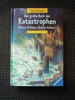 Birgit Reineke - Das Große Buch Der Katastrophen