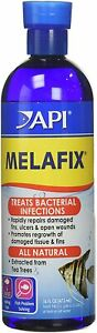 API Melafix Liquid Remedy, Treats Bacterial Infections, 16 oz.