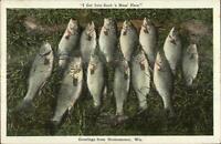 Oconomowoc WI Fishing Catch c1920 Postcard