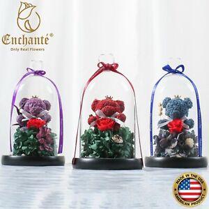 Real Preserved Forever Rose Eternity Bear Glass Dome Birthday Wedding Gift
