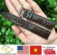 BROWN Genuine Alligator Crocodile Skin Leather Watch Strap Band 20mm 22mm 24mm