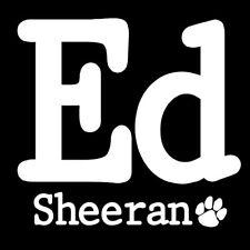 Parche /Iron on patch, Back patch, Espaldera/- Ed Sheeran, G