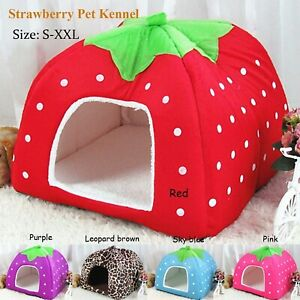 New Pet Cat Dog Puppy Bed Pat House Foldable Soft Warm Cartoon Strawberry Bed