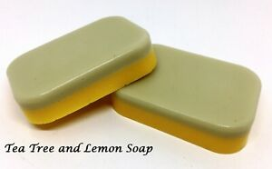 Vegan 100% Natural Handmade Soap with Essential Oils and  Shea Butter