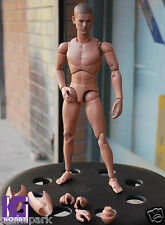 Custom Ver.4 1/6 Narrow Shoulder Nude Figure Body FOR Hot Toys Muscular Club TTM