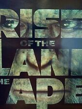Movie Theatre Poster, Rise Of The Planet Of The Apes, Double Sided 27x40